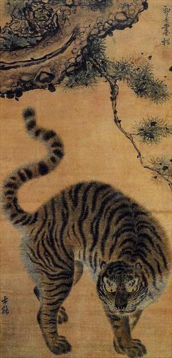 Tiger70